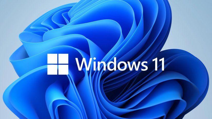 Windows 11 y Google Discover.